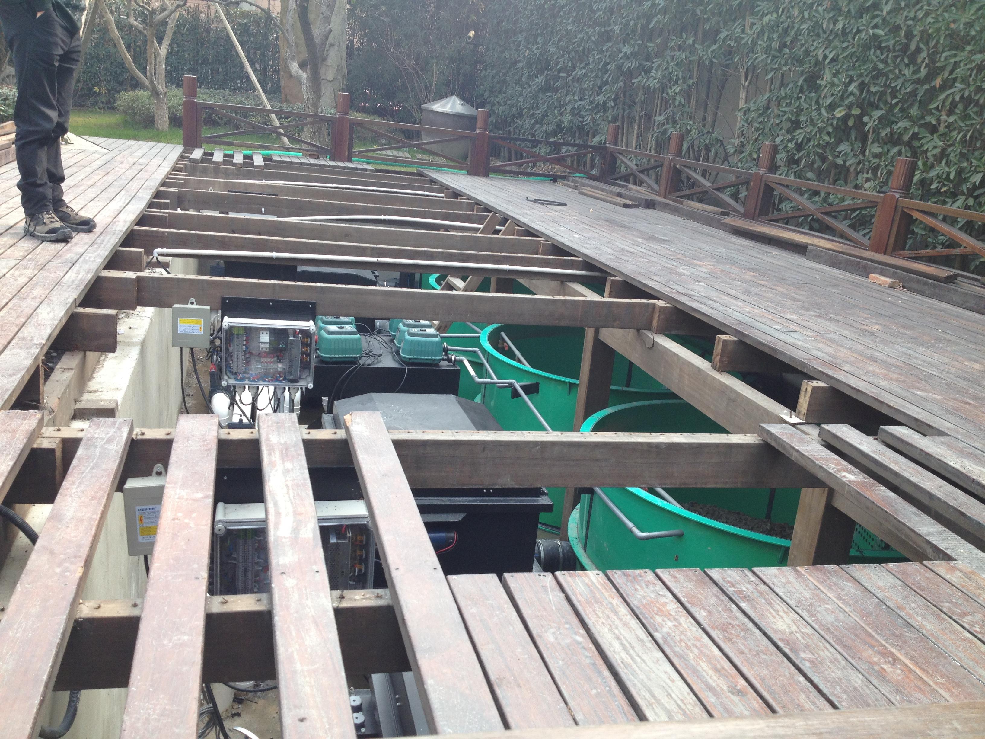 景观渔塘过滤设备安装 (2)installing filtration equipments.JPG